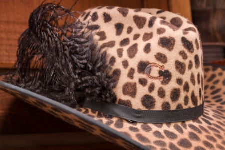Womens leopard print cowboy hat with black feather plume photo