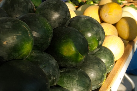 organically: Organically grown display of melons for sale at local farmer market Stock Photo