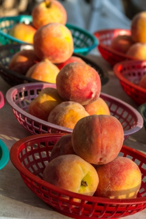 locally: Locally grown display of fresh yellow peaches for sale at local farmers market in red baskets