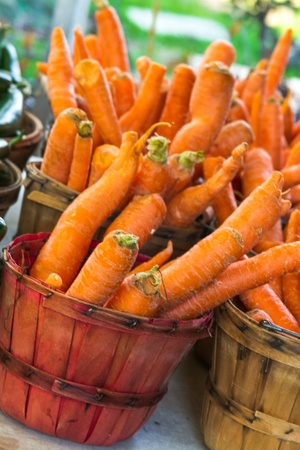 bushel: Colorful bushel basket filled with locally grown carrots for sale at local farmers market