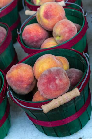 Fresh from the orchard yellow peaches on display at local farmers market photo