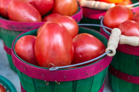 Organically grown red roma tomatoes on display at local farmer market photo