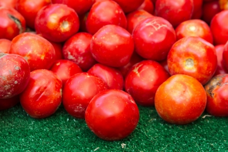 organically: Display of organically grown red tomatoes at local farmers market Stock Photo