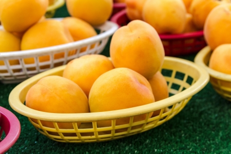 Fresh locally grown apricots on display at local farmers market photo