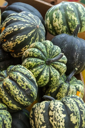 Locally grown basket of gourds on display for sale at local farmers market photo