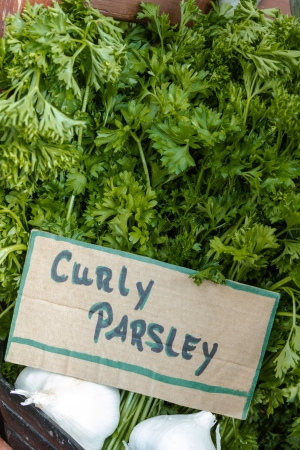 locally: Locally grown bunches of curly parsley for sale at local farmers market Stock Photo