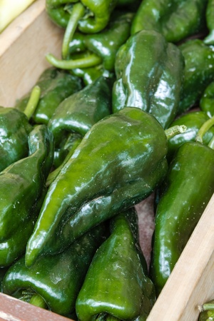 organically: Organically grown jalapeno peppers for sale at local farmer market