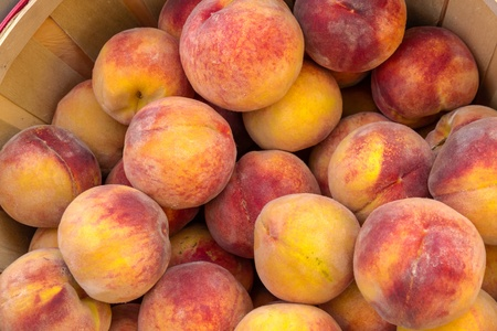 full grown: Close up of large bushel basket full of locally grown peaches at local farmers market Stock Photo