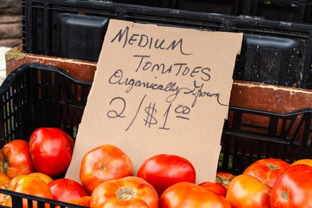 organically: Organically grown red tomatoes in basket with sign for sale at local farmers market