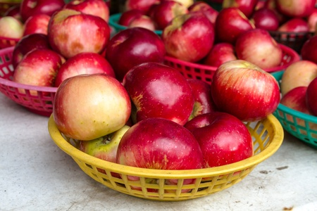 Organically grown red apples in basket with sign for sale at local farmers market photo