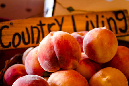 country living: Ripe yellow peaches in basket in front of Country Living wooden sign