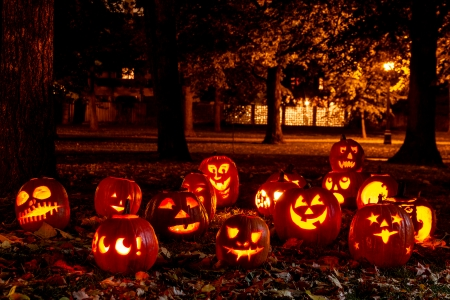 Group of candle lit Halloween pumpkins in park on fall evening Фото со стока - 23071508