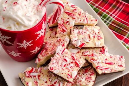 뜨거운 코코아와 크림을 가득 빨간색 눈송이 찻잔 흰색 접시에 초콜릿 박하 나무 껍질