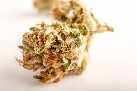 stash: Close up of medicinal marijuana buds oh white background Stock Photo