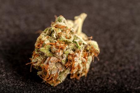 medicinal marijuana: Close up of medicinal marijuana buds on black background