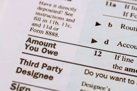 tax form: Close up of words Amount you owe on tax form