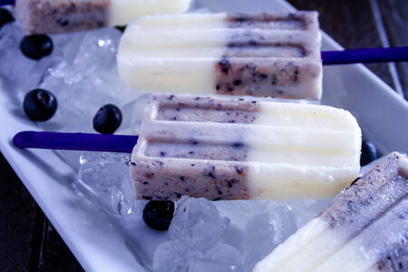 Homemade vanilla, blueberry and coconut milk ice cream sitting white plate filled with ice and fresh berries photo