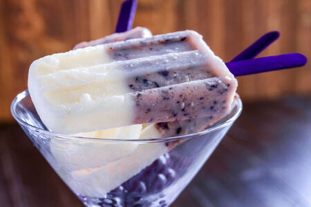 Homemade vanilla, blueberry and coconut milk ice cream sitting in martini glass photo