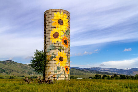 Rural ranch silo with painted sunflowers and old farm equipment on sunny summer morning