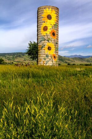 Rural farm silo with painted sunflowers and old farm equipment on sunny summer morning with yellow wildflowers