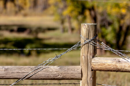 Close up of barbed wire stretched on wooden fence post photo