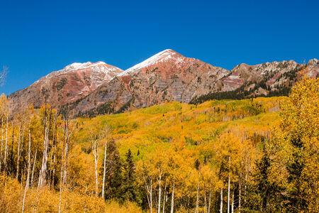 freshly fallen snow: Neve fresca su montagne lungo Kebler Pass vicino a Crested Butte Colorado in autunno mattina di sole