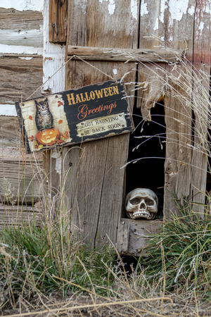 Scary Halloween skull in old abandoned wood building with Halloween greetings sign