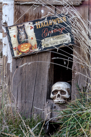 goblins: Scary Halloween skull in hole in old abandoned wood building