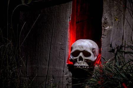 rote ampel: Gruselige Halloween Sch�delknochen sitzt Loch in alten, verlassenen Holzhaus mit rotem Licht beleuchtet Lizenzfreie Bilder