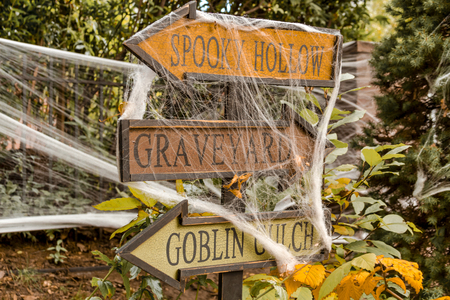 Halloween directional sign arrows covered with spider web Stock Photo