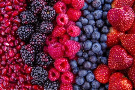 next to each other: Fresh organic pomegranate seeds, blackberries, raspberries, blueberries and strawberries in lines next to each other