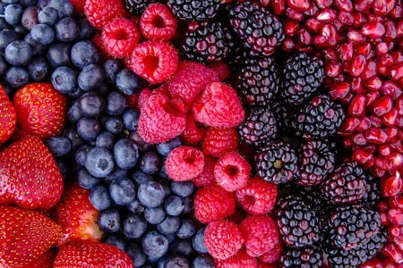 raspberries: Fresh organic pomegranate seeds, blackberries, raspberries, blueberries and strawberries in lines next to each other
