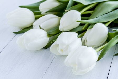 Bouquet of white tulips laying on white wooden table