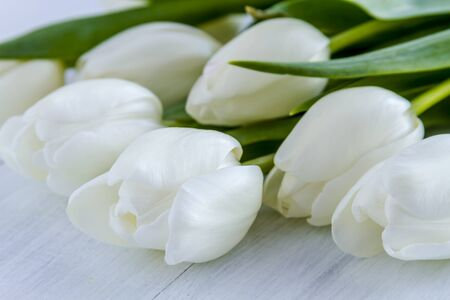Close up of bouquet of white tulips laying on white wooden table