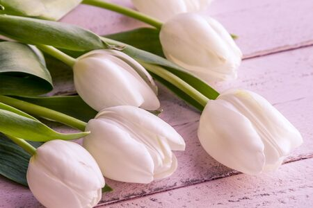 Bouquet of white tulips laying on antique pink wooden table