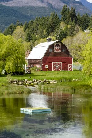 red barn: Little red barn reflecting in small pond surrounding by weeping willow trees in rural coastal setting along Pacific Coast Highway 101 on sunny spring morning Editorial