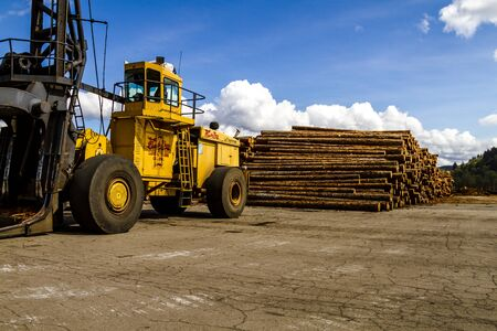 logging industry: RAINIER WASHINGTONU.S.A. - April 6, 2015: Large machinery used to carry and load processed trees in log yard, ready for transport on April 6, 2015 Rainier Washington Editorial