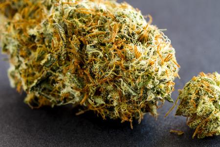 hemp: Close up von medizinischem Marihuana Knospen sitzen schwarzem Hintergrund