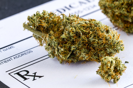 Close up of medical marijuana buds sitting medical prescription pad on black background Stockfoto