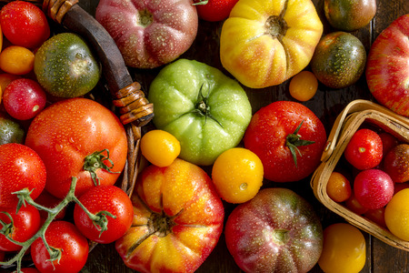 Colorful assortment of fresh organic heirloom tomatoes sitting on wooden table