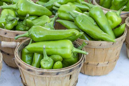 bushel: Fresh organic anaheim peppers in brown bushel baskets