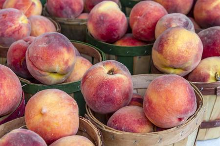 bushel: Fresh organic yellow peaches in brown bushel baskets