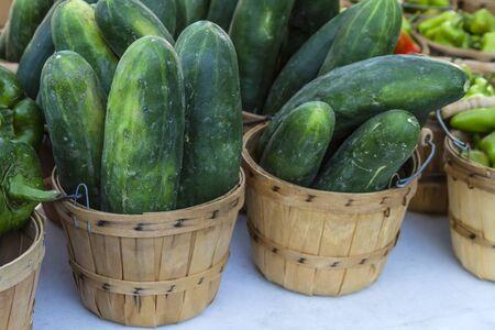 bushel: Fresh organic cucumbers in brown bushel baskets