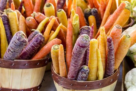 bushel: Bushel baskets and coloful buckets filled with fresh organic rainbow carrots
