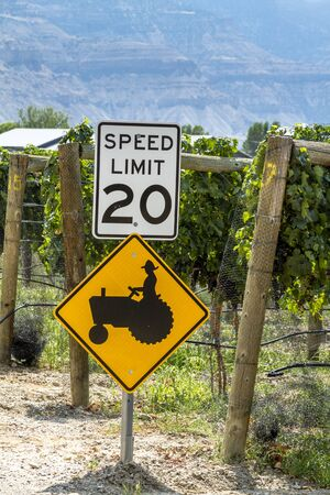 wine road: Farmer crossing sign along road in wine vineyard Stock Photo