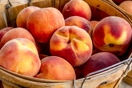 roadside stand: Close up of large bushel baskets filled with fresh from the orchard organic yellow peaches for sale at roadside produce stand