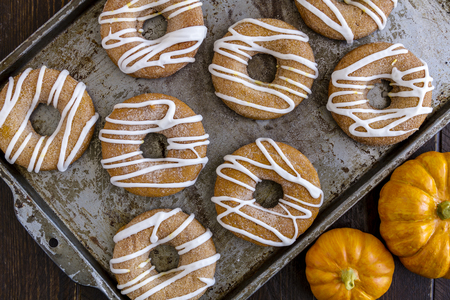 pumpkin pie: Close up of baking pan filled with homemade baked cinnamon pumpkin donuts with apple cider drizzle and small pumpkins on the side