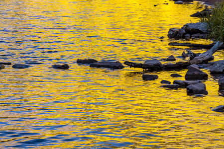 yellow trees: Abstract image of yellow fall Aspen trees reflecting in water of lake with rocks and logs