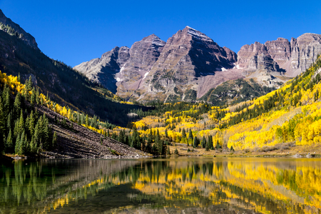 Maroon Bells mountain peaks reflecting in Maroon Lake on early autumn morning with bright blue skies and changing yellow Aspen trees on mountain slopes