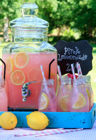 Close up of picnic party in the park drink table with large pitcher and glass bottles filled with ice cold pink lemonade and fresh lemons, with pink swirled straws and sign sitting on pink gingham  tablecloth Stock Photo